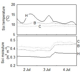 Soil moisture increases with rain, as on 3 July, and decreases during rainless period. The measurements are from our measuring site in July 1998